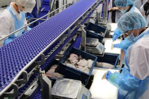 Žemės ūkio ministerija klimpsta aukcione