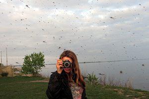 Dėl vabzdžių įgėlimų – panika