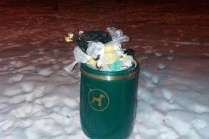 Gyventojai pyksta: šiukšlių dėžės perpildytos šunų išmatomis