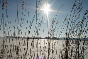 Uostamiestyje – pavasariškos nuotaikos