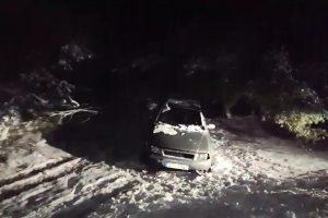 Telšių rajone nuo kelio nulėkė automobilis, vairuotojas – girtas