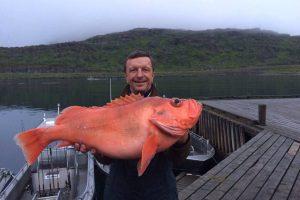 KTU rektorius Norvegijoje pagavo įspūdingą žuvį