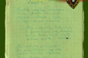 Peršautas partizano Balčio dienoraštis