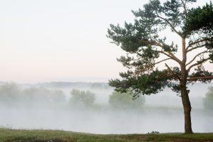 Lietuvoje eismą sunkina rūkas