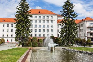 Kaune – pirmasis gydytojų ir pacientų pasivaikščiojimas