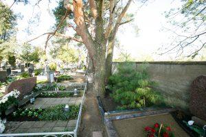 Vandalo žygis į Petrašiūnų kapines