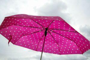 Nepamirškite skėčių: laukia lietinga savaitė