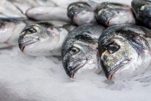 Baigtas tyrimas dėl Palangos bendrovėje dingusių žuvų