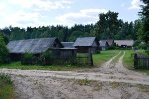 Dzūkijoje atgimsta du etnografiniai kaimai