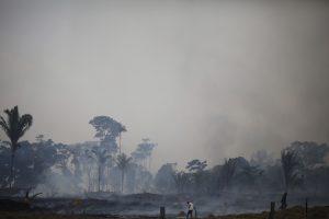 Amazonės miškų gaisras Peru kelia grėsmę ir gyventojams, ir gyvūnams