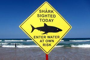 Australijoje ryklys užpuolė du žmones