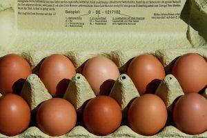 Dėl Nyderlanduose užterštų kiaušinių – patikros Lietuvos paukštynuose