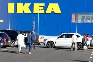 """""""Ikea"""" tapo didžiausia privataus miško valdytoja Lietuvoje"""