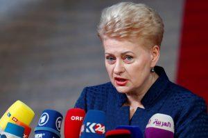 D. Grybauskaitė: Rusijos veiksmai Kerčėje – agresyvus karas prieš Ukrainą