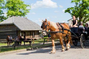 Lietuviai pradėjo keliones po kaimus