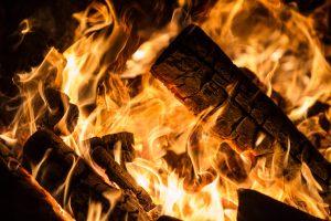 Ministerija: deginti šakas galima ir laužui kūrenti, ir dešrelėms kepti