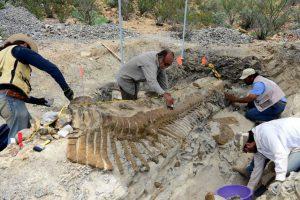 Dinozaurai nyko milijonus metų?