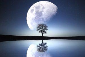 Astrologinė prognozė vasario 25–kovo 3 d.