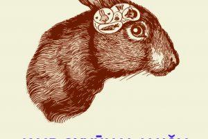 Gamta P. Wohllebeno knygose: tarp nuostabos ir kartojimosi