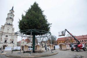 Aplink Kauno eglutę suksis vaikystę menanti karuselė
