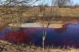 Aplinkosaugininkai kreipsis į prokuratūrą dėl tyčinės taršos Vilniaus rajone