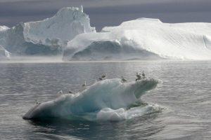 Mokslininkai: Grenlandijos ledynai tirps sparčiau