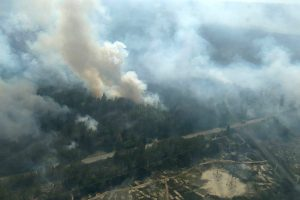 Pareigūnai: miško gaisras Černobylio zonoje užgesintas
