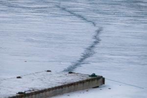 Savaitgalį skendo plonu ledu ėję žmonės