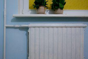 Vietoj šildymosi kietuoju kuru siūlomas centrinis šildymas, kitaip grės mokesčiai