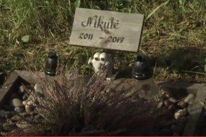 Po gyvūnėlių kapinėmis – dujotiekis
