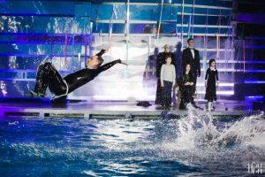Adamsų šeimyna delfinariumą apvertė aukštyn kojom