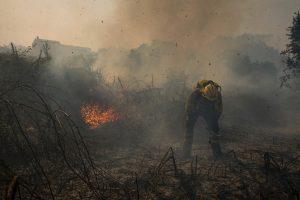 Portugalijos ir Ispanijos ugniagesiai kovoja su gaisrais