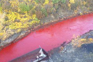 Raudonasis pavojus: kodėl Rusijos upė staiga pasruvo krauju?