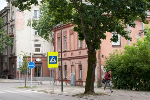 Teismas uždraudė Kauno savivaldybei kirsti medžius be ekspertizės