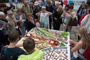 Vilnius sveikina Kauną: iš vaišių sudėlioti miesto simboliai