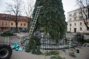 Baigiama išmontuoti Kauno Kalėdų eglė