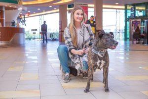 Būrys žymių žmonių kviečia padėti likimo nuskriaustiems gyvūnams