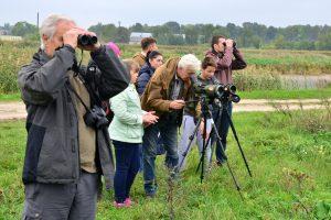 Ornitologai ruošiasi išlydėti paukščius