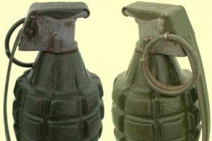 Policija Kauno rajone aptiko granatų
