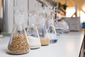Lietuvoje pagaminti biodegalai užkariauja Skandinaviją