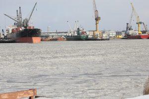 Malkų įlanka žengs į naują lygį