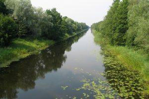 Vilhelmo kanale aptiktas skenduolis