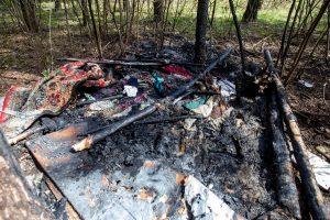 Šiurpi mirtis: Kleboniškio miške sudegė benamis