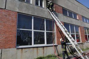 Ugniagesiai skubėjo gesinti degantį pastatą (papildyta)