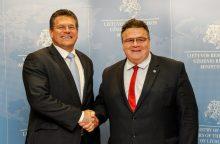 Eurokomisaras tikina suprantantis lietuvių nerimą dėl Astravo jėgainės
