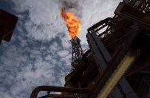 Analitikai: praėjusią savaitę dujos atpigo beveik 15 proc.