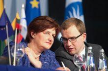 L. Graužinienė: V. Gapšys nenori būti liberalų priedanga