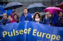 Ekspertas: grėsmė Europos vienybei kyla iš vidinės nesantaikos