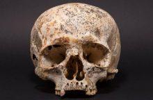 Bronzos amžiaus moters veidas: ar atitinka šiuolaikinio grožio standartus?
