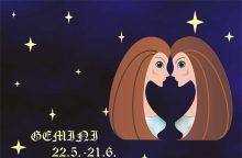 Draugystės horoskopas: kas artimiausias Dvynių sielai?